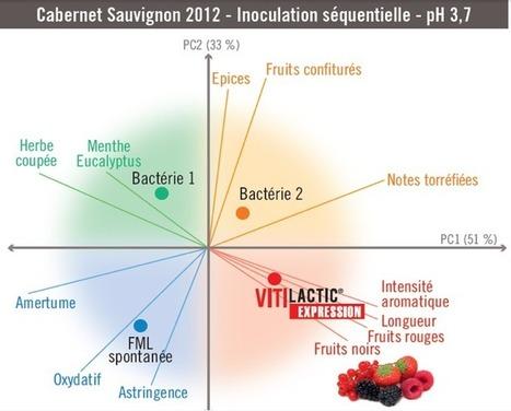 Objet: Renforcer la fraîcheur des vins rouges grâce à la FML. | Verres de Contact | Scoop.it
