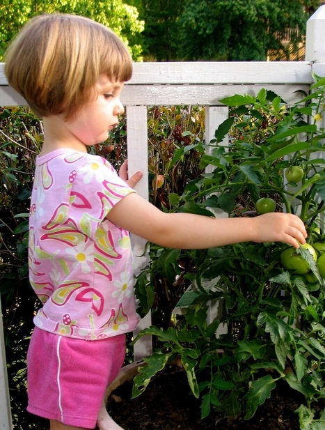 Junior Master Gardener Program: More Dirt Might Promote Eating More Veggies | School Gardening Resources | Scoop.it
