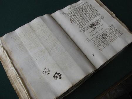 Medieval cat's paw prints on manuscript - Retronaut | Good Advice | Scoop.it
