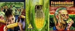 Wake Up And Smell The GMOs | Spicie.com | Natural Food | Scoop.it