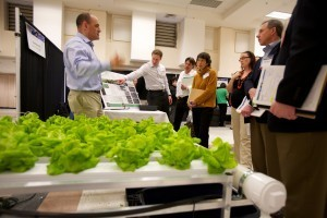 Seattle Sustainable Urban Farming Startup Keeps it 'Hyperlocal', Growing Food on Rooftops | Dave Sellers, Iconoclast Architect , GroupThink about the {non-gadgety} house, home, neighborhood, culture, and sustainable living situation for the future. IDEAS WELCOME, INVITED, ENCOURAGED, and MUCH APPRECIATED! | Scoop.it