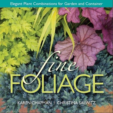The Big Reveal – Fine Foliage   Annie Haven   Haven Brand   Scoop.it