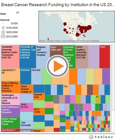 Where do breast cancer research dollars go? Three data visualizations of 9k grants and $4.8bn | Breast Cancer Advocacy | Scoop.it