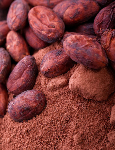 Cocoa versus cacao - what's the health difference? - Stuff.co.nz | fair trade chocolate | Scoop.it
