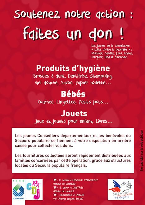 Tarn - Collecte du Conseil départemental des jeunes pour lutter contre la pauvreté des enfants | Initiatives solidaires | Scoop.it