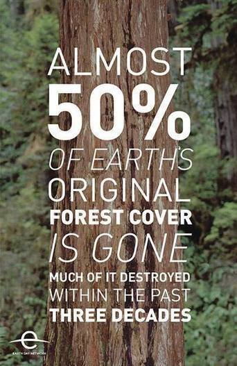 Powerful Eco Ads and Images | wild-tropics: Please freaking reblog this, no... | Nature Animals humankind | Scoop.it