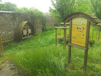Un village pour les abeilles sauvages   Les colocs du jardin   Scoop.it