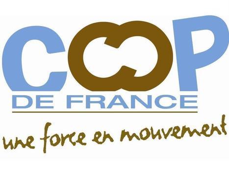 Coop de France pourrait limiter le salaire des dirigeants de coopératives. | agro-media.fr | Actualité de l'Industrie Agroalimentaire | agro-media.fr | Scoop.it