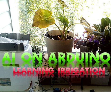 AI on Arduino (learning irrigation station) | Arduino Focus | Scoop.it