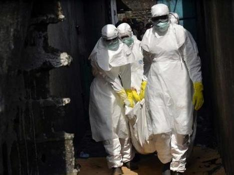 New Ebola case discovered hours after WHO declared end of the outbreak   World News   Scoop.it