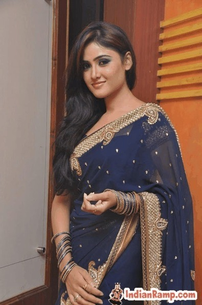 Sony Charista in Navy blue Saree with Golden-Border Photoshoot | CHICS & FASHION | Scoop.it