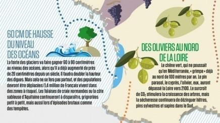 Avec quelques degrés de plus, l'Océan à Bordeaux - Rue89 Bordeaux | Actualités écologie | Scoop.it