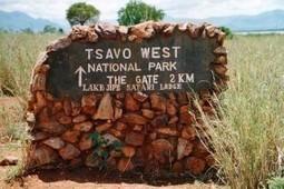 KWS installs CCTV cameras at Tsavo  to curb poaching | Kruger & African Wildlife | Scoop.it