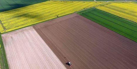 La politique agricole commune n'a pas créé d'emploi, selon le rapport d'un eurodéputé - Le Monde   Le Fil @gricole   Scoop.it
