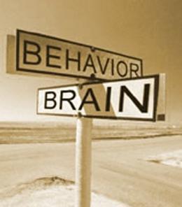 Brain, Behavior, and Media | Social Media Impact on Psychological Behavior | Scoop.it