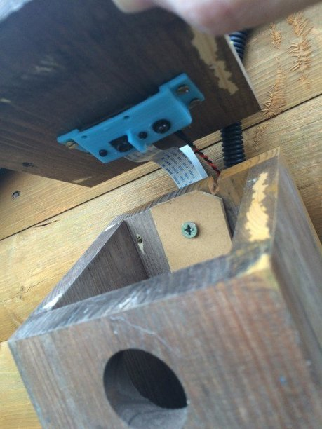 Raspberry Pi Powered BIrdbox Build @Raspberry_Pi #piday #raspberrypi | Raspberry Pi | Scoop.it