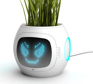 Digital Pot tells you what Plants want by Junyi Heo » Yanko Design | La Domotique et le Net | Scoop.it