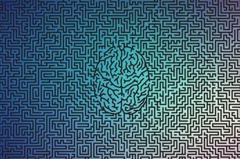 The Brain Science Behind Gut Decisions | Mindful Leadership & Intercultural Communication | Scoop.it