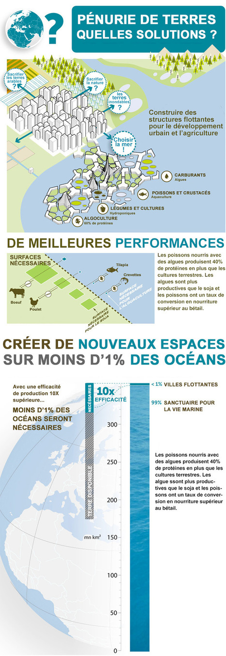 Vingt mille lieux sur les mers : comment les architectes voient la vie ... - Le Monde | Géographie : les dernières nouvelles de la toile. | Scoop.it