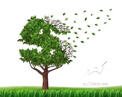 7 Errores Frecuentes en Nuestras Finanzas - Pullback Trading | Trading | Scoop.it