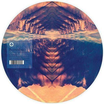Bonobo Cirrus zoetrope 12″ picture disc | Scott's Linkorama | Scoop.it