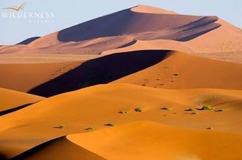 The Namib Sand Sea - UNESCO's second... - Asia to Africa Safaris | Facebook | My Funny Africa.. Bushwhacker anecdotes | Scoop.it
