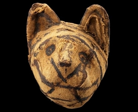 Animals Mummified by the Millions in Ancient Egypt : Discovery News | Ancient Egypt Culture | Scoop.it