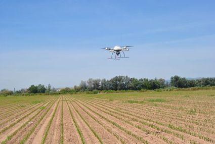 Agriculture : des drones pourraient limiter l'usage des herbicides | Chimie verte et agroécologie | Scoop.it