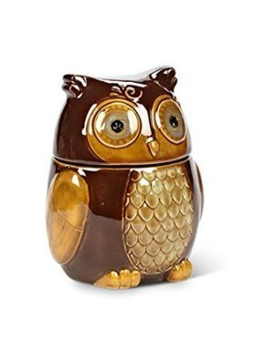 7.5 Stoneware Brown Owl Kitchen Food Storage Canister - Kitchen Things | Stuff for the Home | Scoop.it