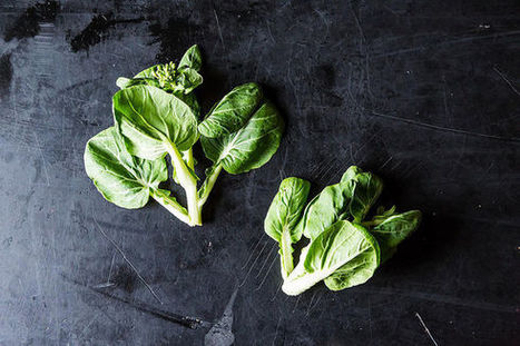 Tatsoi is the New Spinach (Haven't You Heard?) | Foodie Corner | Scoop.it