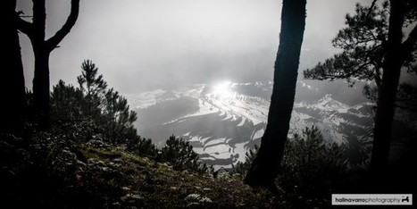 Bontoc's quiet secret: Mt. Kofafey and Maligcong rice terraces - Tara lets anywhere   Philippine Travel   Scoop.it