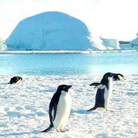 Antarctic ice shelves could melt faster than expected | Antarctica | Scoop.it