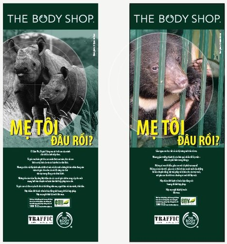 Where's My Mama campaign asks Vietnamese to consider impact of their purchases on Bears and Rhinos | Wildlife Trafficking: Who Does it? Allows it? | Scoop.it