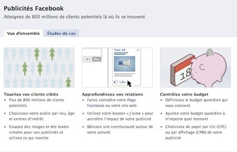 Facebook futur eldorado de la publicité ? | Mikael Witwer Blog | Scoop.it