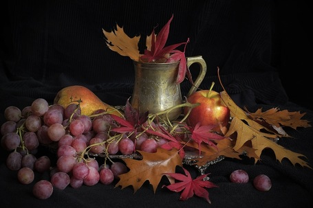 Autumn colours - a still life study with X-Pro1 | vk.photo | Fuji X-Pro1 | Scoop.it