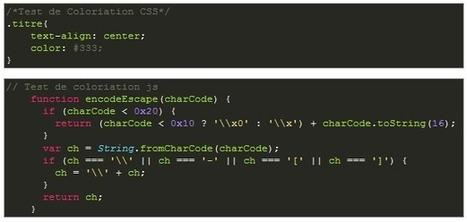 Ajouter une Coloriation de Code à vos Projets Web Avec Google Code Prettify # JunkSource Blog JunkSource Blog | Veille technologique: développement web | Scoop.it