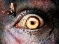 Halloween, i 13 film horror consigliati per una notte da brivido - Diregiovani | Film, cinema e serie TV | Scoop.it