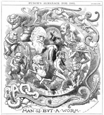 Revista de Libros: «Del enjambre a la tribu» de Carlos López Fanjul -- La conquista social de la Tierra | A New Society, a new education! | Scoop.it