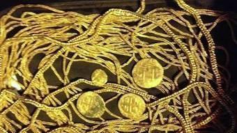 Treasure-hunting Sanford family strikes gold | DiverSync | Scoop.it