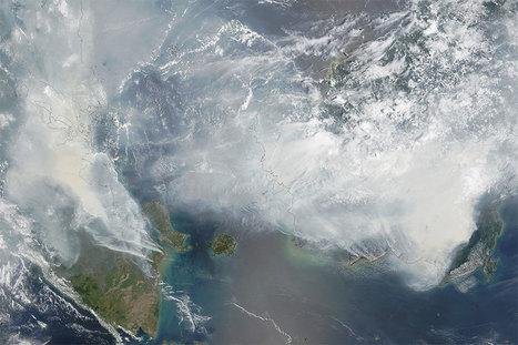 L'Indonésie est ravagée par des incendies hors de contrôle qui étouffent les populations (vidéo) - notre-planete.info | environnement et santé | Scoop.it