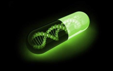 Les modifications actives de l'ADN au coeur des préoccupations des chercheurs   Institut de Pharmacologie et Biologie Structure   Scoop.it