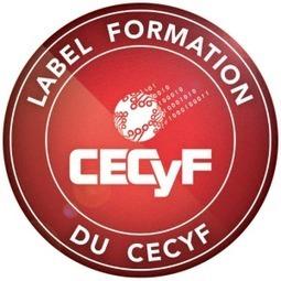 #Sécurité: Lancement du label formations contre la #Cybercriminalité du #CECyF (@Cyber_FR) via @ericfreyss   Information #Security #InfoSec #CyberSecurity #CyberSécurité #CyberDefence   Scoop.it