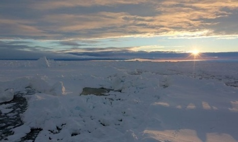 Soap, sunscreen and steroids found in Antarctic waters and wildlife | #Un Mundo Socialmente Responsable | Scoop.it