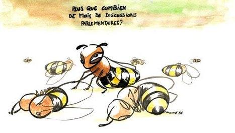 Fédération des apiculteurs du Québec | Les apiculteurs du Québec et de l'Ontario pressent leur gouvernement respectif à réaliser des actions communes pour protéger les abeilles et l'industrie apicole | Abeilles, intoxications et informations | Scoop.it