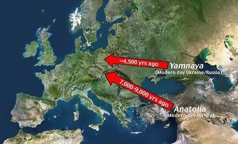 European languages were carried from the East | European Peoples and Cultures | Scoop.it