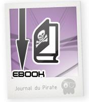 Le piratage de livres numériques, coûts et solutions « Le blog de Bouquineo | L'édition numérique pour les pros | Scoop.it