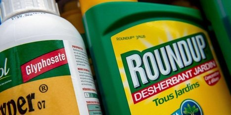 L'Europe s'oppose à une nouvelle autorisation du Roundup | Agriculture en Dordogne | Scoop.it