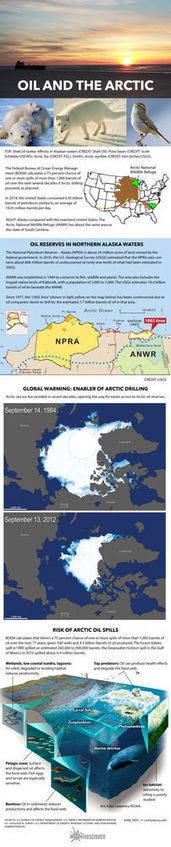 The Alaskan Arctic Oil Drilling Controversy Explained (Infographic) | Coastal Restoration | Scoop.it
