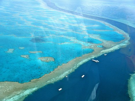 Australia permits dredge dumping near Great Barrier Reef for major coal port | In Deep Water | Scoop.it