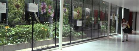 Citadins et biodiversité logent à la même enseigne | Construction Durable | Scoop.it